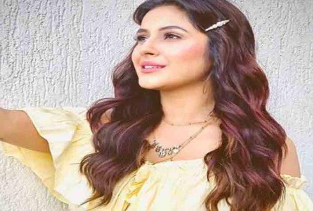 shehnaaz gill bigg boss season 13 bollywood news