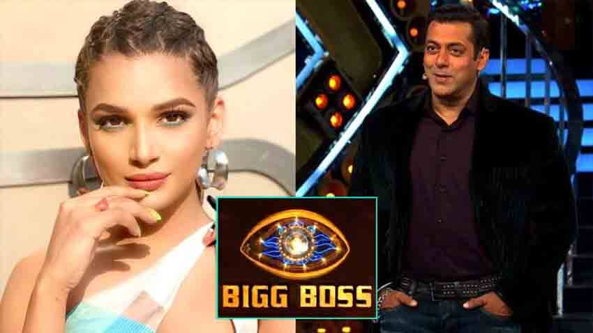 salman khan show bigg boss 14 naina singh to enter the show
