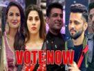 bigg boss 14 favourite contestants Rubina jasmin eijaz rahul