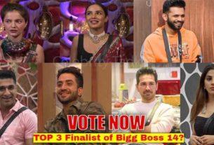 bigg boss 14 top 3 finalist poll