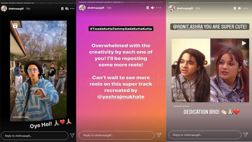 Shehnaaz Gill Instagram story
