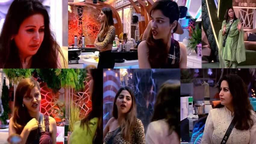 Bigg Boss 14 Rubina Dilaik Nikki Arshi Sonali Phogat