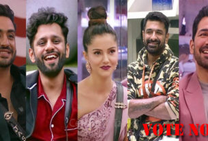 bigg boss 14 top 2 finalist Rubina Dilaik Rahul Vaidya Aly Goni