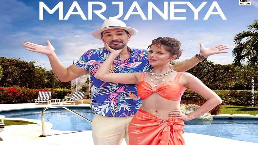 Rubina Dilaik Abhinav Shukla music video Marjaneya