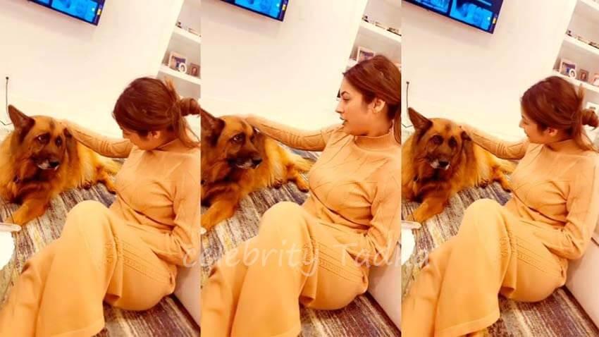 Shehnaaz Gill talking to pet dogs