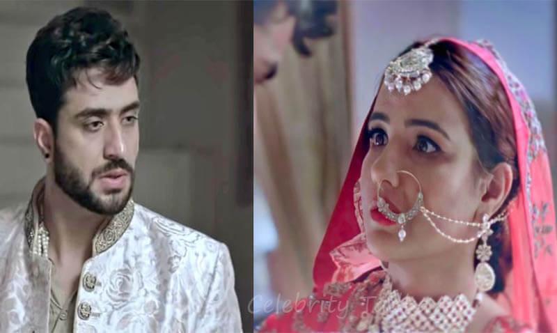 Jasmin bhasin Aly goni music video