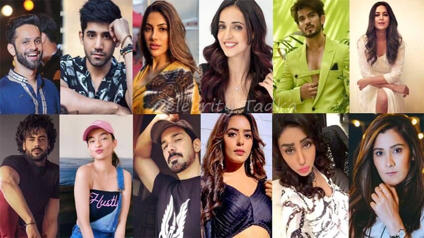 Khatron ke khiladi 11 contestant list